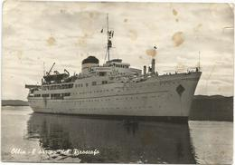 X3690 Olbia (Sassari) - L'arrivo Del Piroscafo Calabria - Navi Ships Bateaux / Non Viaggiata - Olbia