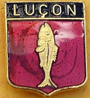 EE 360 )......ECUSSON.......LUCON........département De La Vendée En Région Pays De La Loire - Villes