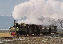 Dampfzug Der Steyrtalbahn Im Dezember 1975,ungelaufen - Trains