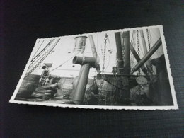 NAVE SHIP BOTTI VINO INTERNO NAVE DA INDIVIDUARE FOTOGRAFICA - Commercio