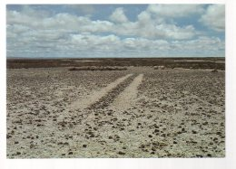 REF 331 :  CPM Bolivie Richard Long 1982 - Bolivie