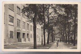 REF 338 :  CPSM LYON Ecole De Tissage Et Beaux Arts - Lyon