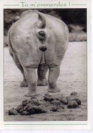 REF 349  :  CPM  Hippopotame Tu M'emmerdes Caca Bousse... - Animaux & Faune