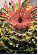 REF 349  :  CPSM TRINIDAD Carnaval - Trinidad
