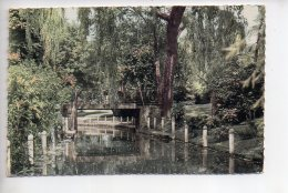 REF 307  :  CPSM 80 Albert Le Jardin Public - Albert