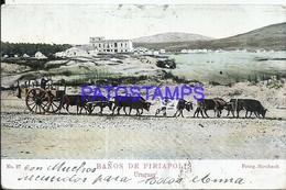 97093 URUGUAY BATHS BAÑOS DE PIRIAPOLIS CART A COW SPOTTED CIRCULATED TO GERMANY POSTAL POSTCARD - Uruguay