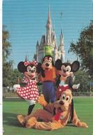 Florida Orlando Walt Disney World Mickey Mouse Minnie Goofy &amp