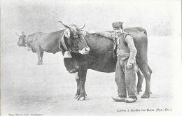 Laitier à Amélie-les-Bains (Pyrénées Orientales) - Edition Mme Marie Noé - Carte Dos Simple Non Circulée - Farmers