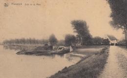 AK - Belgien - Maeseyck - (Maaseik) - Zicht Op De Maas - 1928 - Maaseik