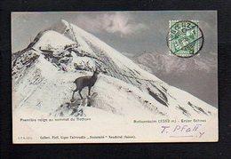 Suisse / Série Pfaff / Première Neige Au Sommet Du Rothorn / Rothornkulm / Erster Schnee / Chamois - Suisse