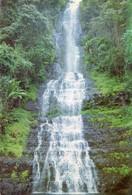 Zimbabwe - Chimanimani - Bridalveil Falls - Zimbabwe
