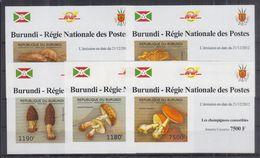 H22. Burundi - MNH - Plants - Mushrooms - Deluxe - Imperf - Mushrooms