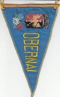 Rare FANION OBERNAI - BAS RHIN 67 - BLEU - Obj. 'Remember Of'