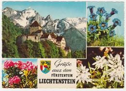 LIECHTENSTEIN MULTIVIEW. SCHLOSS VADUZ, COAT OF ARMS. POSTED - Liechtenstein