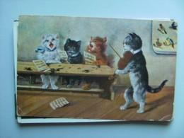 Chats Cats Katzen Poezen Playing Music And Singing Old - Geklede Dieren