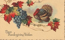 Best Thanksgiving Wishes - Thanksgiving