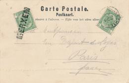 ZZ692 - Annulation Par GRIFFE LINEAIRE En Transit à MERXEM  - Carte Chateau Terlinden TP Armoiries BRASSCHAET Vers PARIS - Poststempel