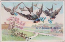 Orne : Près : Athis  ,   Flers  : STE  HONORINE  La  CHARDONNE :  Souvenir  En Oiseaux  ( Destinéé à Falaise) - France