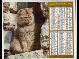 CAL774  CALENDRIER  ANNEE 1980 . SEIGNEUR CHAT .2 Volets Voir Photos Feuillet. AISNE - Big : 1981-90