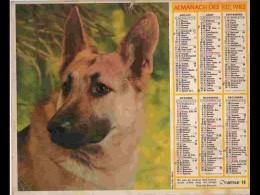 CAL804  CALENDRIER  ANNEE 1982 .BERGER ALLEMAND + .  2 Volets Voir Photos Feuillet...AISNE - Big : 1981-90