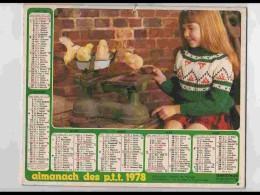 CAL736  CALENDRIER  ANNEE 1978 .PESAGE DE POUSSINS   +  Poneys.   Voir Photos .Feuillets. NORD. Almanach - Calendars