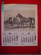 CAL1    PO539  GRAND  CALENDRIER  1977  GRAVURES D' HIPPOLYTE  LALAISSE  49 X 42  CHEVAUX   RACES  Sur Papier Lgrain Fin - Calendars