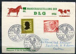 """Germany1956 Sonderkarte DLG Ausstellung Mit .Mi.Nr.234 U.SST""""Hannover-Messegelände 44.Wanderausstellung,Rind""""1 Karte - Landwirtschaft"""