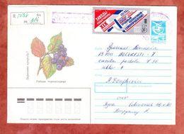 U 442 Transportmittel Pflanze + ZF, Einschreiben Reco, Nach Bukarest 1990 (55483) - 1923-1991 USSR