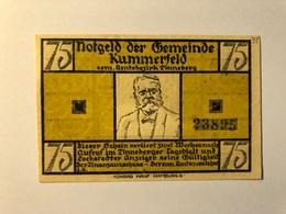 Allemagne Notgeld Kummerfeld 75 Pfennig - [ 3] 1918-1933 : Weimar Republic