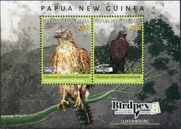 Papua New Guinea. 2018. Rare Birds (MNH OG **) Souvenir Sheet - Papouasie-Nouvelle-Guinée