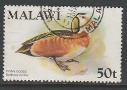 Malawi 1975 Birds 50t Multicoloured SW 238 O Used - Malawi (1964-...)