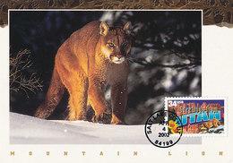D34669 CARTE MAXIMUM CARD 2002 USA - MOUNTAIN LION UTAH CP ORIGINAL - Big Cats (cats Of Prey)