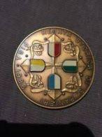 Medaglia Pisa Grande Modulo Regata Storica Di San Ranieri 1986 - Altri