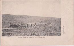 Djibouti :  Halte   En Train  Dans La  Brousse  , Kilom. 37 - Djibouti