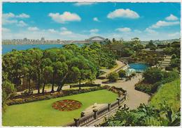[289] SYDNEY. Taronga Zoo, Floral Clock./ Gardens, Jardins, Jardines, Giardini Gärten- Orloges, Relojes, Orologi, Uhren. - Sydney