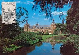 D34681 CARTE MAXIMUM CARD TRIPLE 1993 BELGIUM - HEVERLEE CASTLE CP ORIGINAL - Castelli