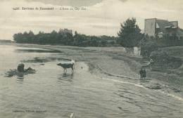 29 FOUESNANT / L'Anse Du Cap Coz / - Fouesnant