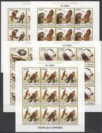 T670 IMPERFORATE 2009 UNION DES COMORES FAUNA BIRDS LES AIGLES !!! 9SET MNH - Adler & Greifvögel