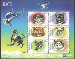 Antigua & Barbuda 2000 Yvertn° 2697-2702 *** MNH Cote 15 Euro Faune Chats Katten Cats - Antigua Et Barbuda (1981-...)