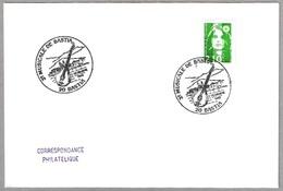 3e  MUSICALE DE BASTIA - LAUD - LUTE. Bastia 1990 - Música