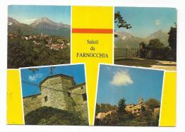 SALUTI DA FARNOCCHIA - VIAGGIATA FG - Lucca