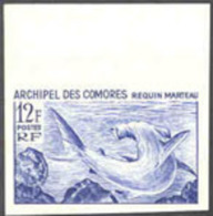 Comoros (1965) Hammerhead Shark. Trial Color Proof In Violet-blue.  Scott No 64, Yvert No 36. - Other