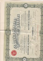 COMPANIA MINERA DE VEREDAS 1905 ESPAGNE - Mines
