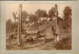 ARCACHON // PHOTOGRAPHIE ANCIENNE DE GEMMEURS EN PLEINE RECOLTE - Métiers