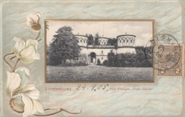 AK- Präge - Lithographie - Luxembourg - 1905 - Ansichtskarten