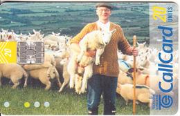 IRELAND - Turism, Beautiful Ireland/Field & Animals, Chip SC7, Tirage 87500, 06/99, Used - Ireland