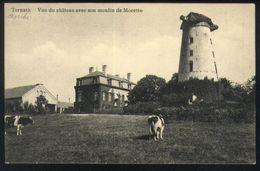 Z06 - Ternat - Vue De Château Avec Son Moulin De Morette / Molen - Ongebruikt - Ternat