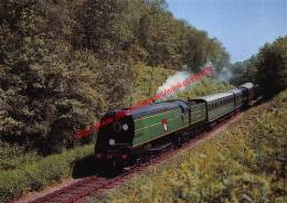 Blackmore Vale - Pacific - Train - Trains