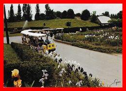 CPSM/gf (75)  PARIS.  Parc Floral De Paris, Le Petit Train...H185 - Parques, Jardines