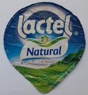 Egypt - Couvercle De Yoghurt Lactel Natural (foil) (Egypte) (Egitto) (Ägypten) (Egipto) (Egypten) Africa - Milk Tops (Milk Lids)